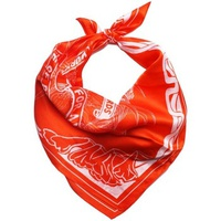 Diesel - Silk Neckerchief 22x22 in / 55x55 cm SKATE orange